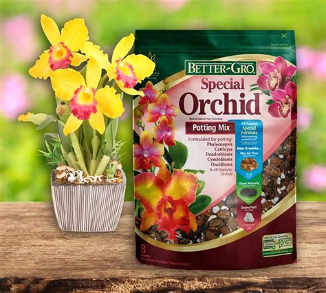 top 28 ideas about better gro orchid plant supplies on
