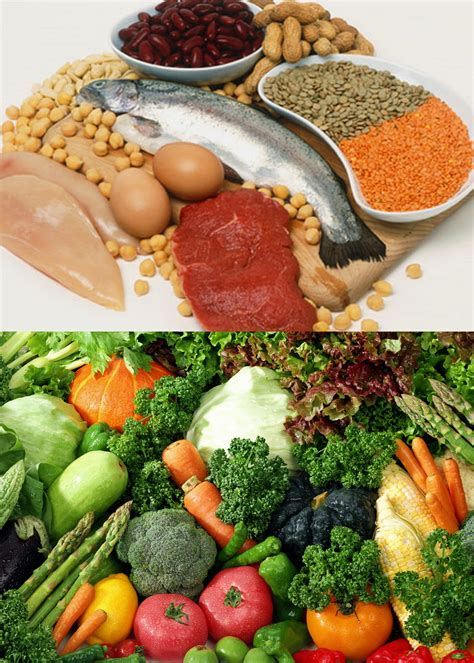 igf 1 carbohydrates the baseline diet part 2 protein carbohydrates and