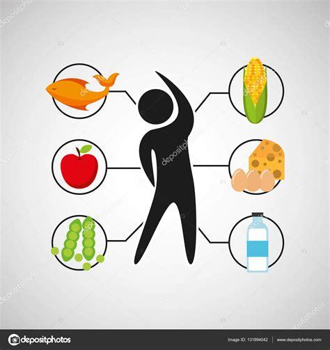 imagenes vectores salud deporte hombre nutrici 243 n salud archivo im 225 genes