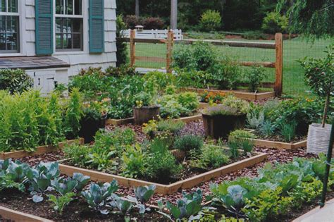herb and vegetable garden ideas benefits of starting your own garden perfume genius