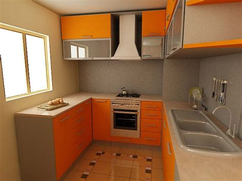 small kitchen design ideas    neil kelly story