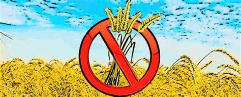 alimentos prohibidos para celiacos lista de alimentos prohibidos para cel 237 acos