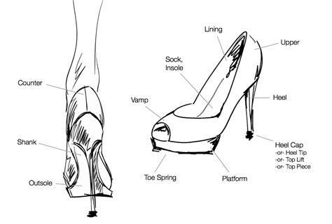 parts of a shoe office pointe high heel and running