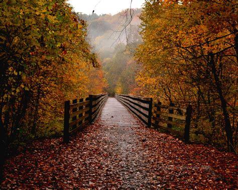 tumblr themes free autumn the air in autumn
