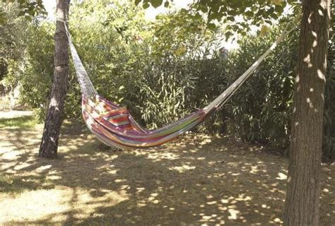 Hammock Between Two Trees hammock between two trees our yard landscaping dreams