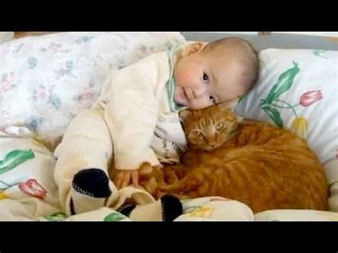 cat and cuddling cats cuddling and with babies with cats