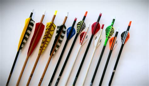 best archery best compound bow arrows thecrossbowstore