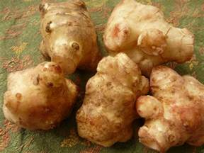 What Is Root Vegetables - root vegetables 101 a primer on the most underappreciated produce mnn mother nature network