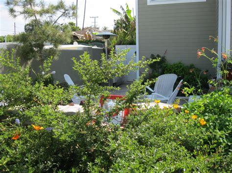 Backyard Creations Orange County California Succulent Front Yard Traditional