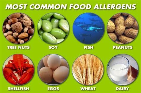 common food allergies food allergies and intolerances leverett elementary school
