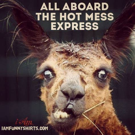 hot mess funny pictures all aboard the hot mess express home facebook