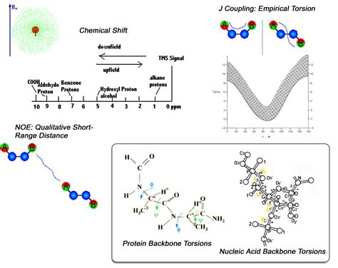 protein nmr chemical shifts dipolar couplings and molecular fragment
