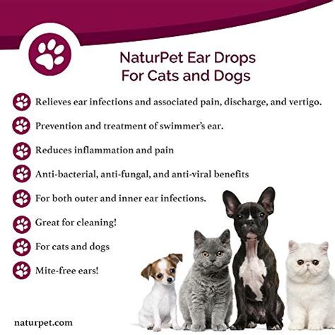 ear drops for dogs ear infection naturpet ear drops ear infection medicine for