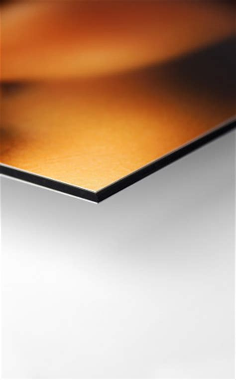 Bauschild Alu Dibond by Druck Auf Alu Dibond Aluminiumverbundplatten