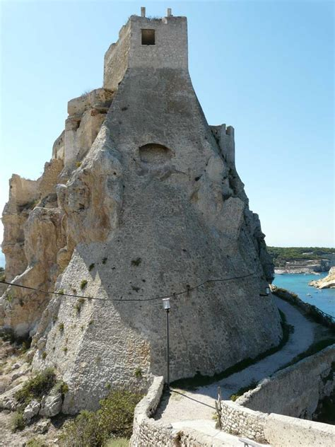 l isola gabbiano isole tremiti isola di san nicola l isola storica