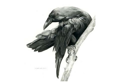 tree and ravens tattoo design waiting on thick tree branch design