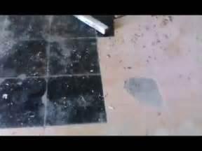 alfombra quemada con plancha como quitar chapopote funnydog tv