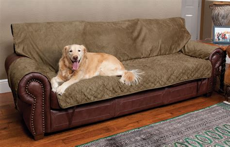 dog settee sofa dog throw for sofa sofa throws for dogs furniture dog and