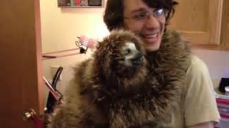 pet sloth memes