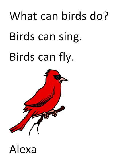 first grade informative writing lesson what can birds do