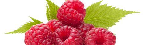y fruit et legume fruit et l 233 gume chfleury corbeille de fruit reims