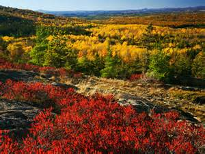 best fall colors the best fall foliage drives in new and canada