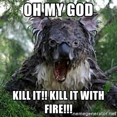 Kill It With Fire Meme - oh my god kill it kill it with fire wet koala