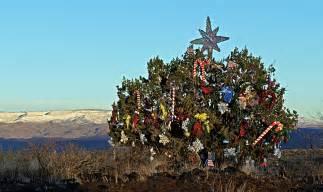 arizonas christmas tree near sunset point on i 17 az