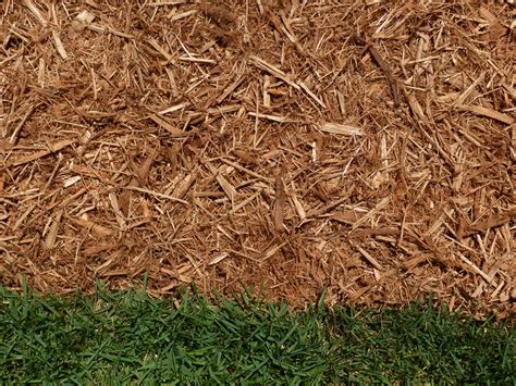 garden mulch types types of mulch major mulch installations orlando mulch