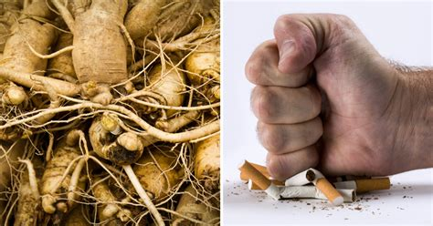 can smoking weed cause mood swings 10 herbs that will help you quit smoking today healthy