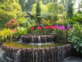The Botanic Gardens Singapore Top 5 Must Visit Places In Singapore Asian Inspirations