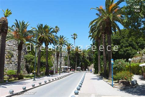 athens to kos by boat holidays in kos island greece hotels dreamingreece