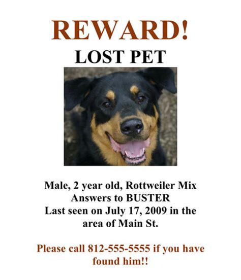design a poster on your missing pet senakim streak club