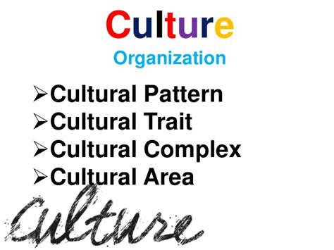 complex pattern meaning in urdu sociology chapter 8 culture