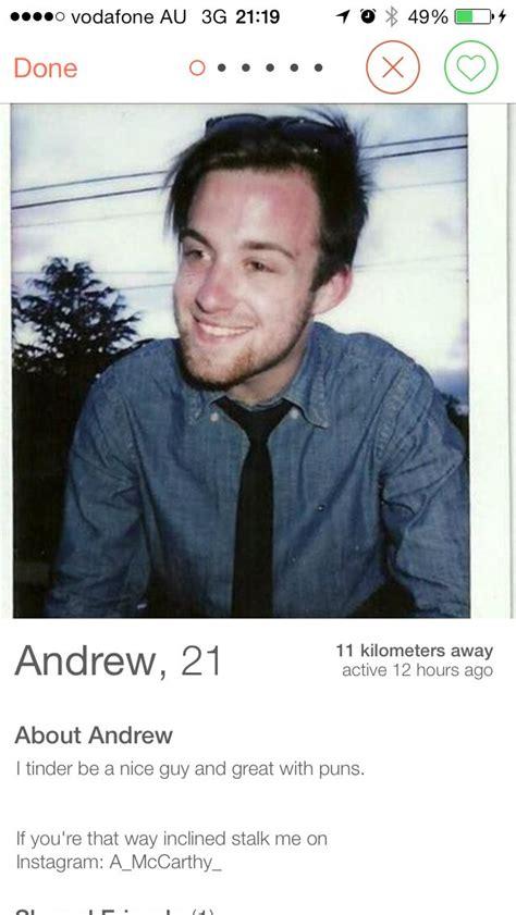 tinder biography ideas great puns tinder hilarious tinder profiles pinterest