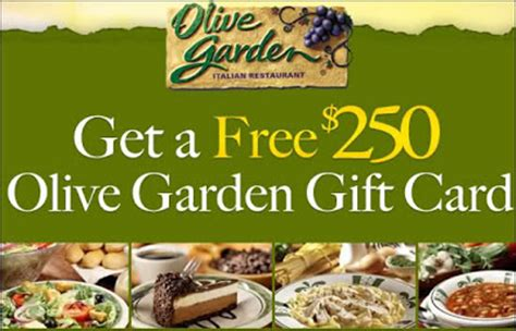 Olive Garden Gift Card Deals by Get A Free 250 Olive Garden Gift Card