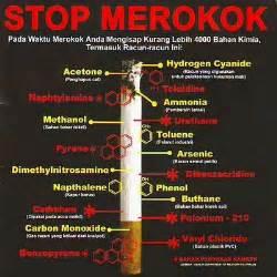 mengapa rokok sangat berbahaya bagi tubuh vensca81
