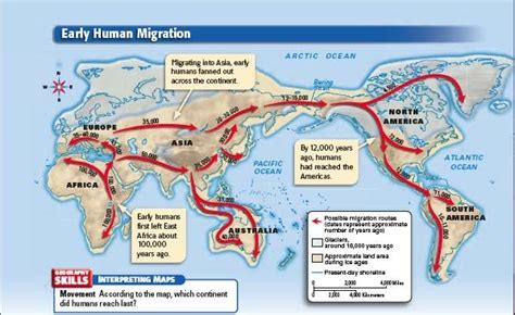 The Human Journey Out Of Africa Worksheet mrsgeib early human migration map human migrations
