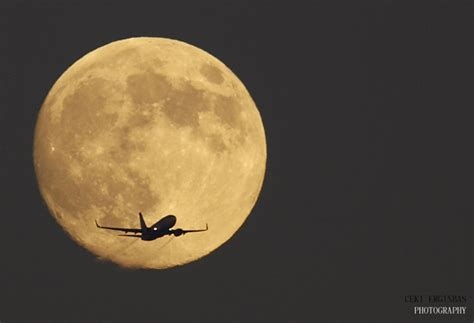 Fly To The Moon moon photographs snaps