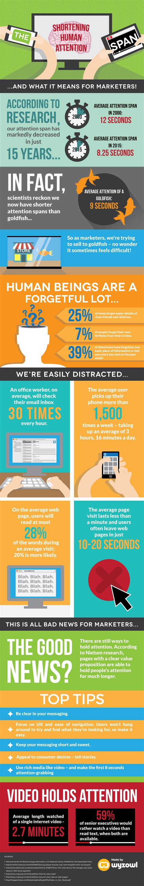 span in human years it s official we shorter attention spans than goldfish infographic