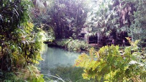giardini all inglese giardino all inglese foto di la reggia di caserta