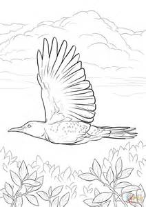 yellowhammer coloring page yellowhammer flying coloring page free printable