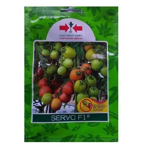 Benih Tomat Harga Per 1 Sachet benih tomat servo f1 1 750 biji panah merah bibitbunga