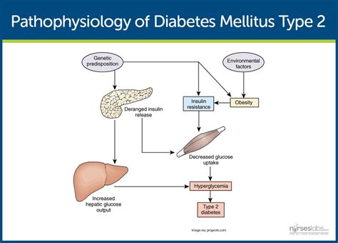real results for with type 2 diabetes books pin diabetes mellitus type 2 pathophysiology diagram image
