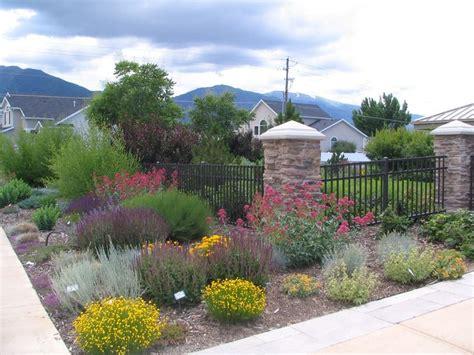 desert plants landscaping ideas