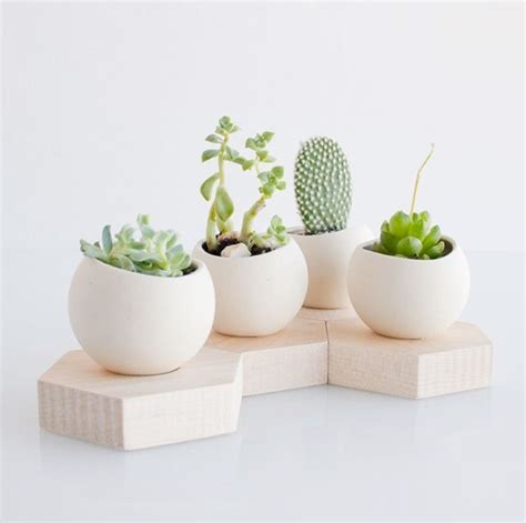 Ceramic Planters by 50 Unique Pots Planters You Can Buy Right Now