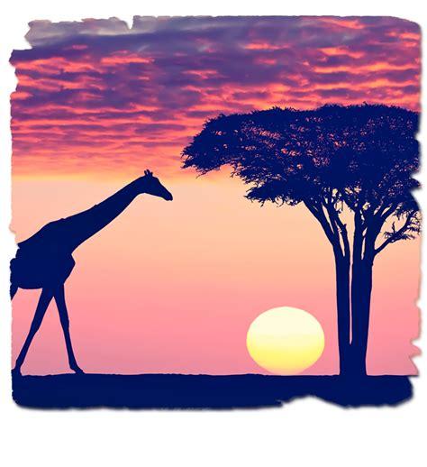 imagenes de cumpleaños para kenia kenia e islas del 205 ndico safari en kenia y mauricio