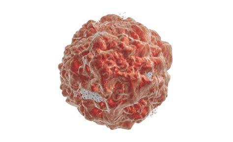 alimentazione contro il tumore ravanelli contro il tumore e il diabete pazienti it