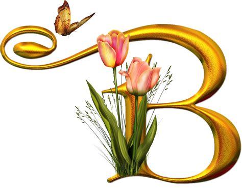 con lettere bello alfabeto con flores y mariposas oh my alfabetos
