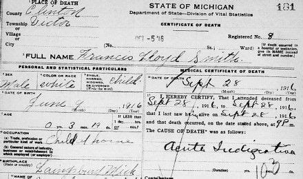 Seekingmichigan Org Records Michigan Records Family Research